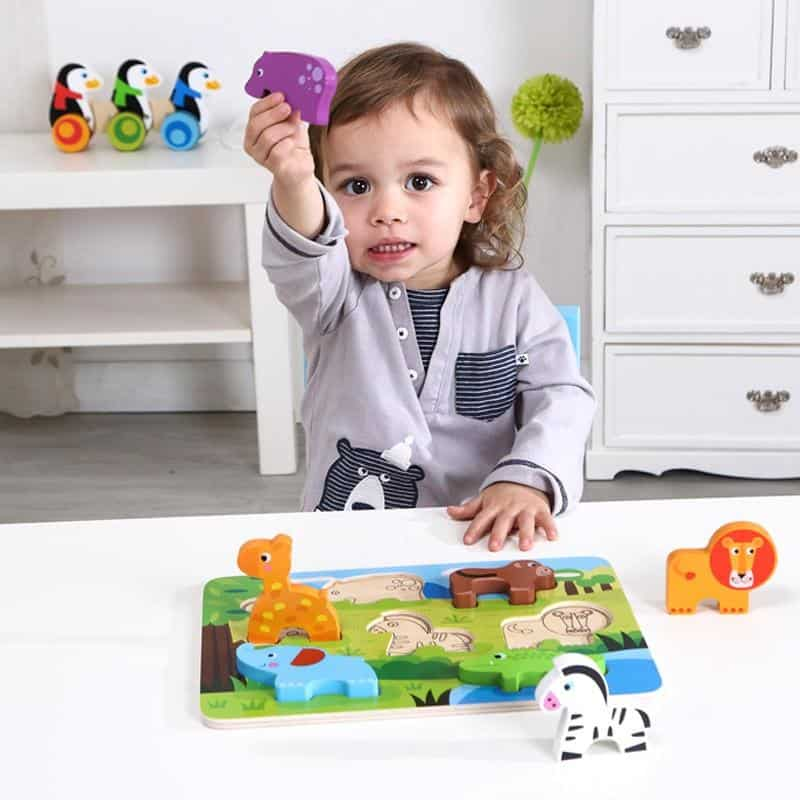 Chunky Puzzle Tooky Toy